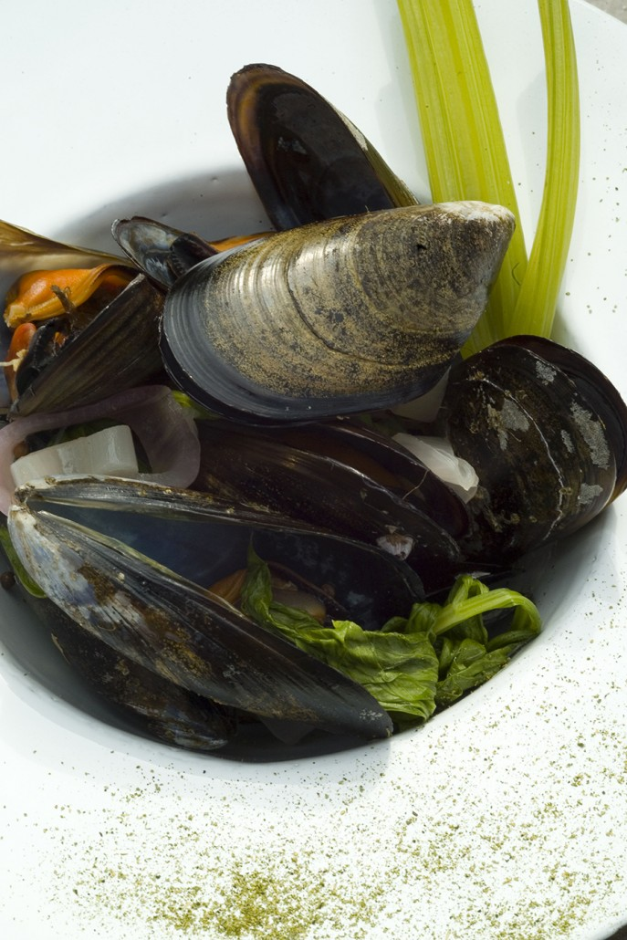 moules marini res la coriandre recette gastronomique. Black Bedroom Furniture Sets. Home Design Ideas